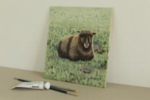 Pictures of Coloured Ryeland sheep - Yoko original acrylic painting