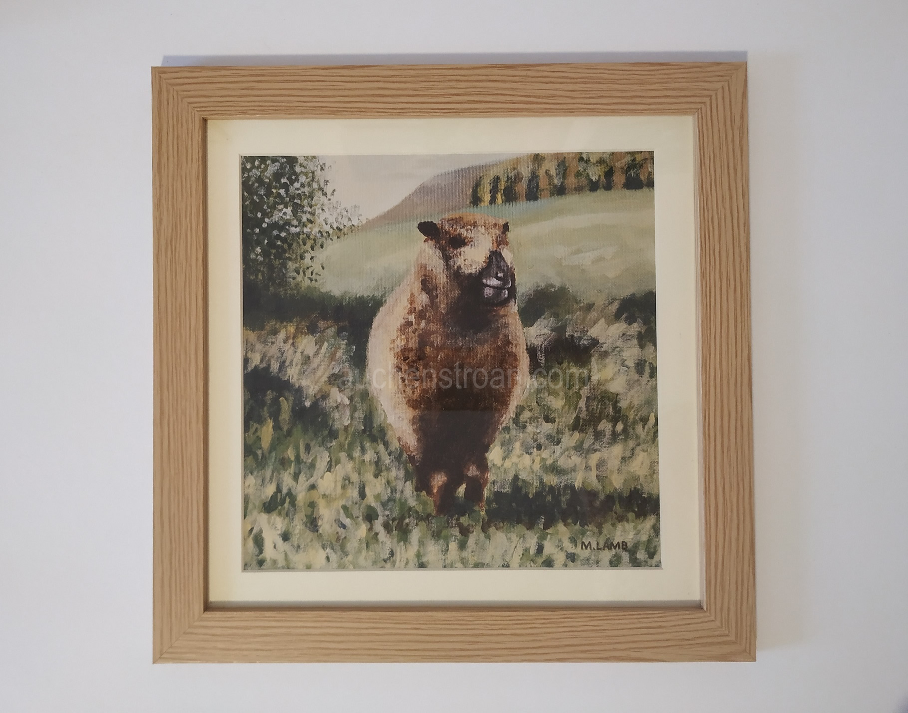 Gifts for sheep lovers - Ynca framed
