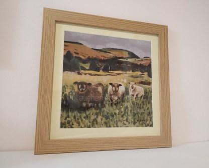 rustic picture framed print - sheep - Yin Yarr & Yogi