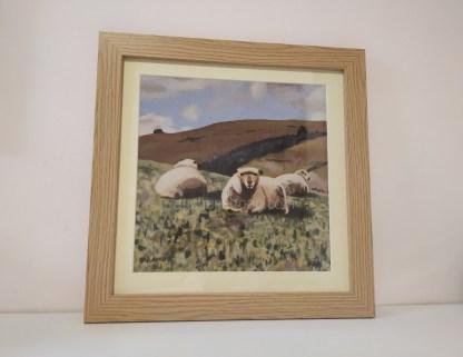 framed print - sheep - Yogi & friends - coloured ryelands