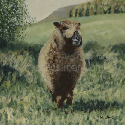 original painting - sheep - Ynca