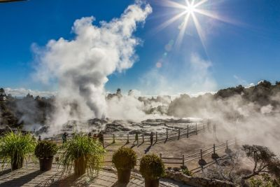Te Puia geothermal valley tour, Geothermal Valley Rotorua Te Puia, Rotorua Cultural Experience Private Tour