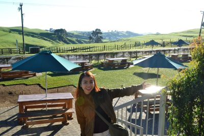 Views from Hobbiton Cafe_1
