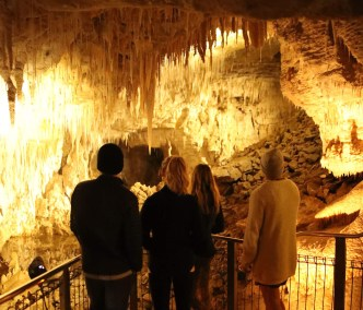 Waitomo Caves walking Tour