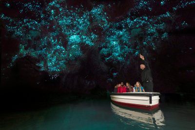 waitomo glowworm caves Boat Tour, Waitomo-Caves, Hobbiton Movie Set & Waitomo Caves Tour