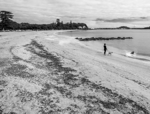 St-Heliers Beach - Black & White
