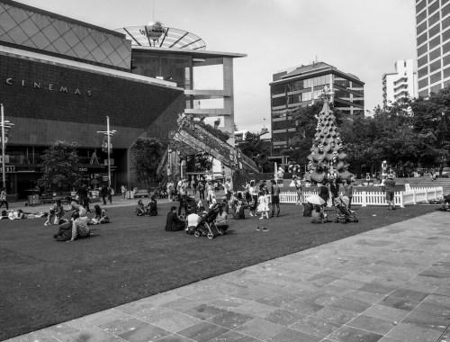Aotea Square Christmas Tree