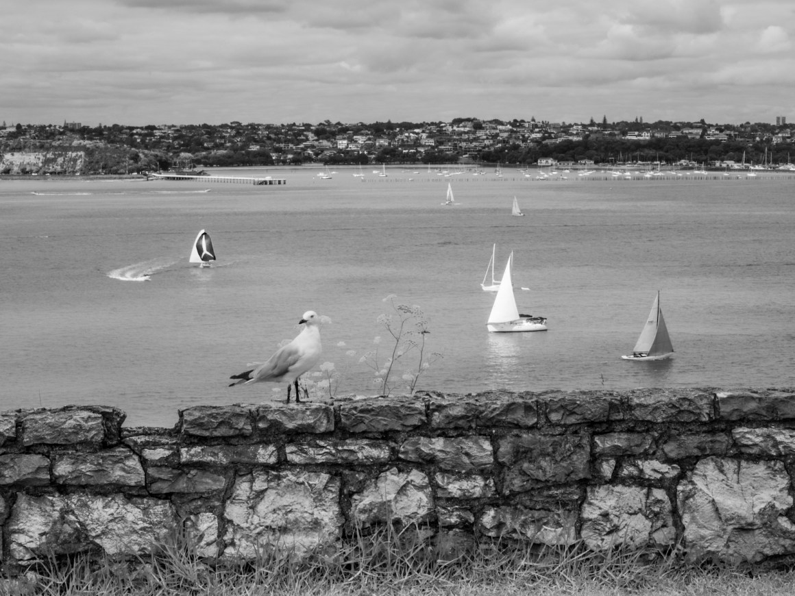 Devonport North Head