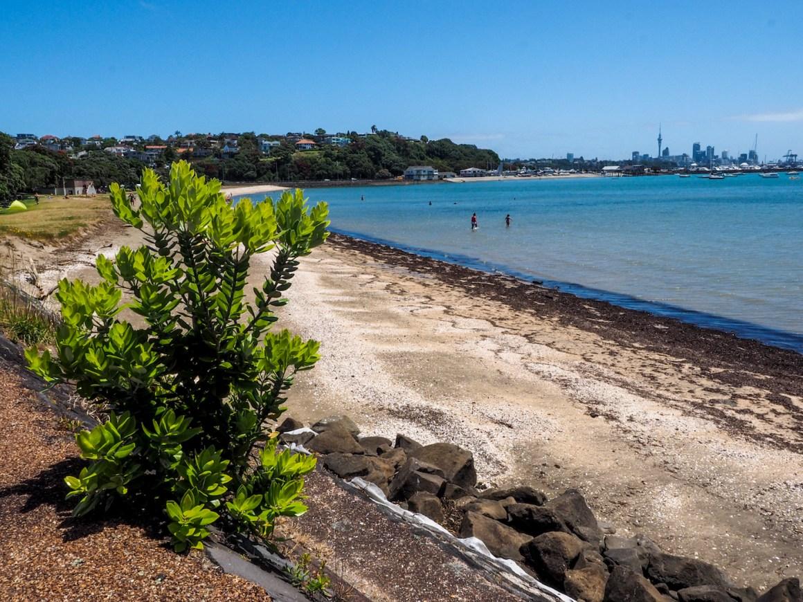 Okahu Bay Beach - Street Photography Auckland