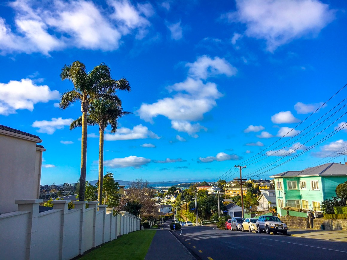 Morning in Remuera - Street Photography Auckland