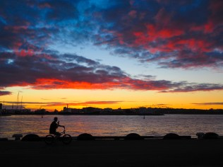 Sunset Cycling in Auckland Viaduct Harbour