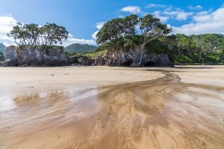 Low Tide at Tryphena Beach on Great Barrier Island, Aotea