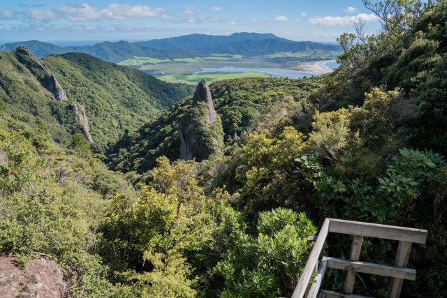 Windy Canyon Walk View, Aotea Great Barrier Island