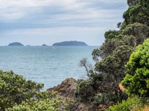 Waiheke Island, Motuhoropapa Island and Otata Island Landscape Photography Auckland