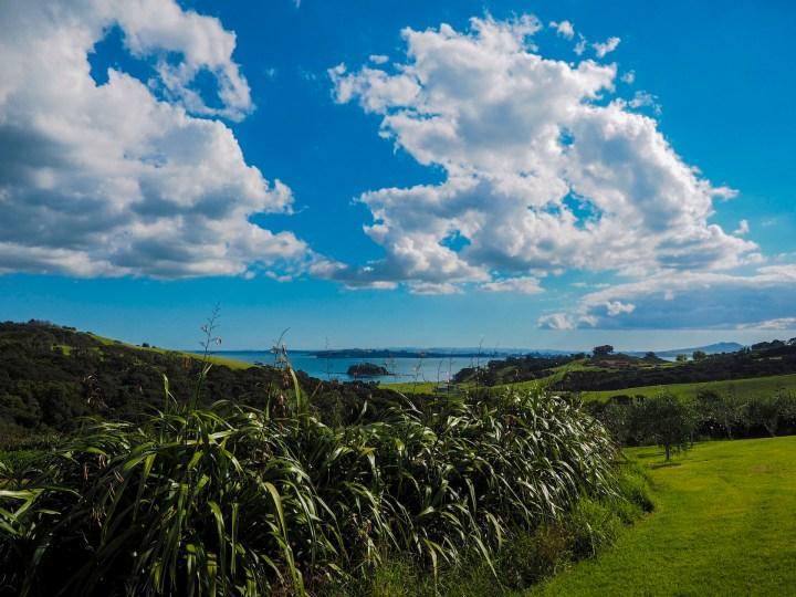 Cable Bay Vineyards Waiheke Island