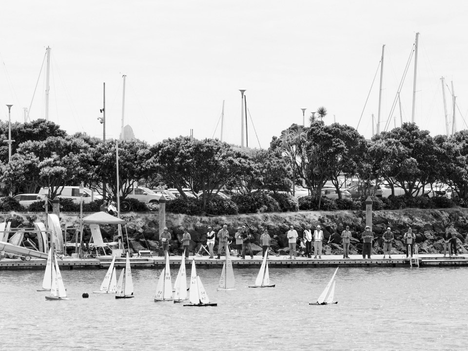 Radio Controlled Yachts Westhaven Harbour - Auckland Street Photography