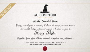 Vous cherchez une boutique Harry Potter en Bretagne ? Voici notre sélection !