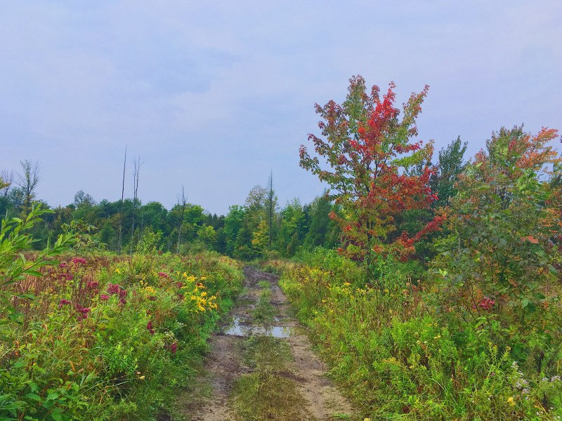 La Rideau Trail