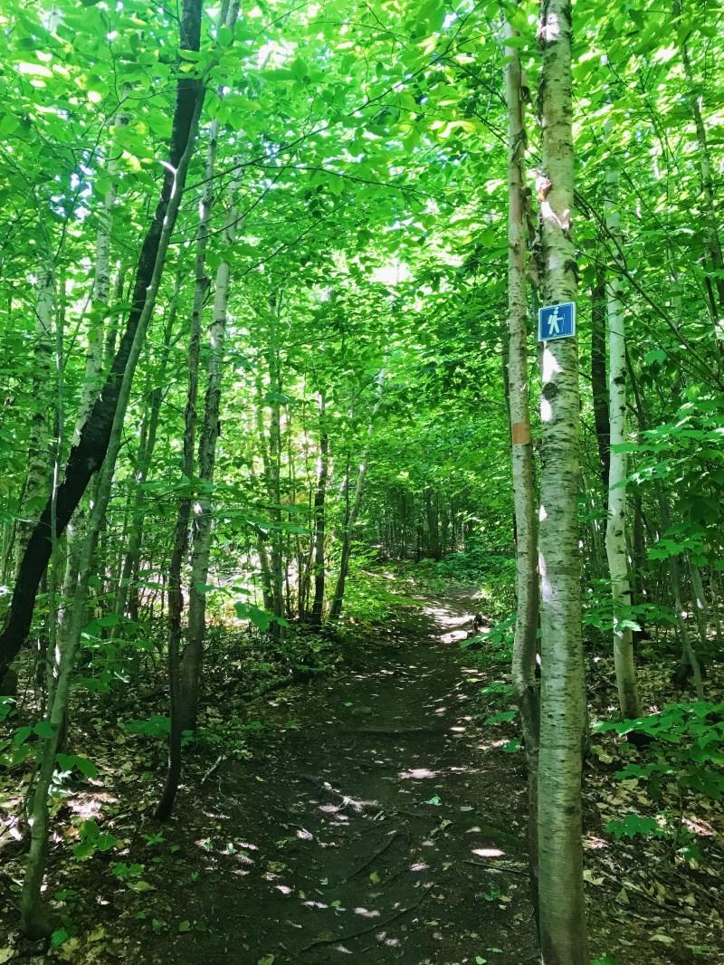 Grand-Pic Trail