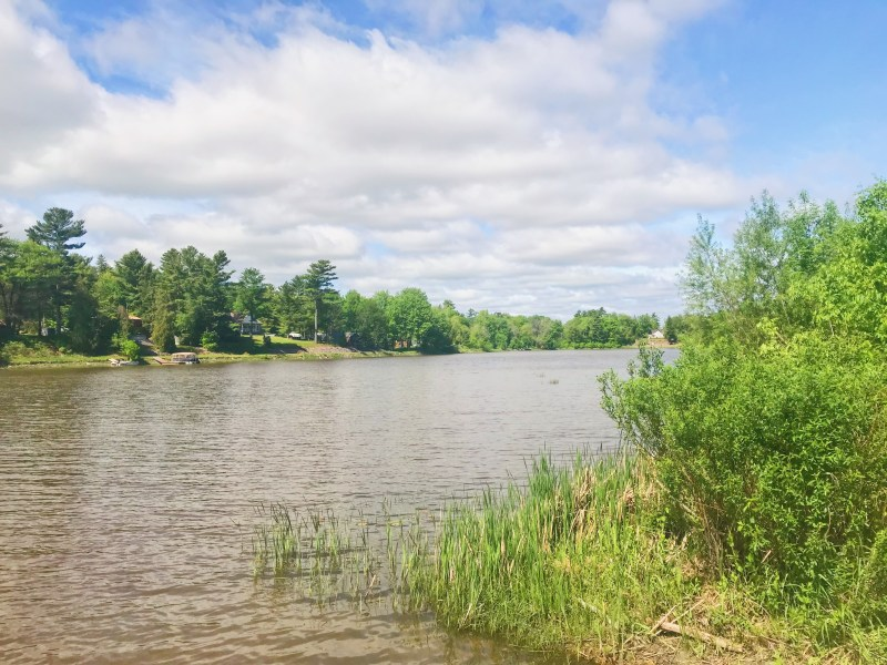 Rivière Nation à Jessup's Falls