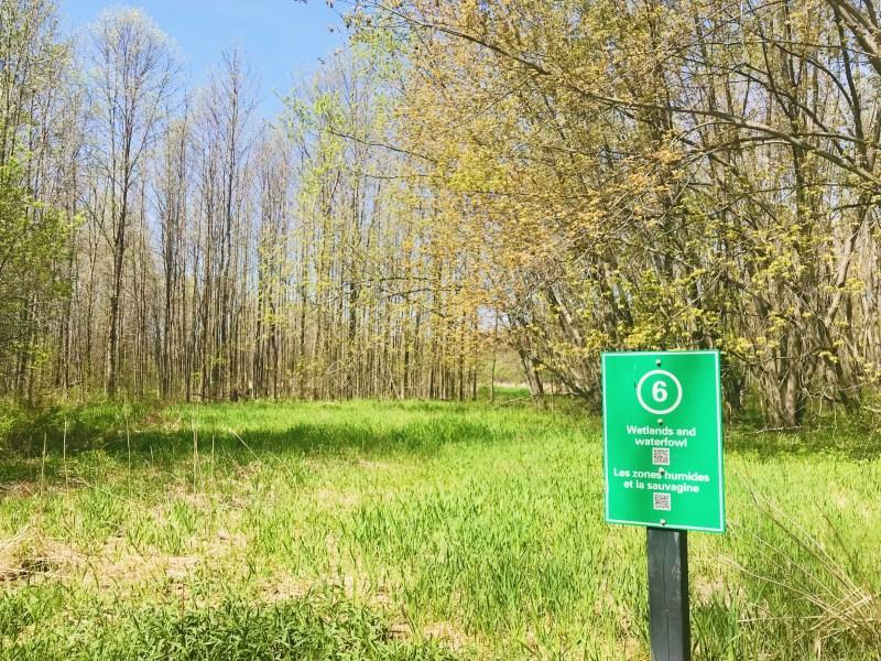 Aire de conservation de la forêt Two Creeks