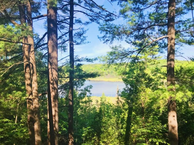 Vue sur le lac Purdon