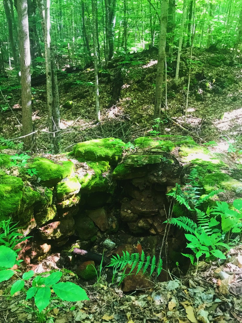 Lime kiln in the forest