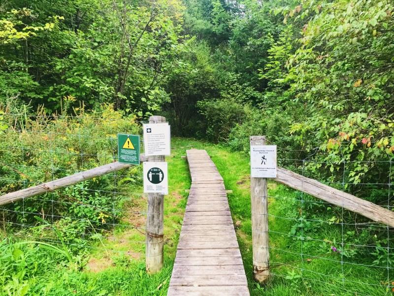 Entrée section supérieure du Ruisseau Jones