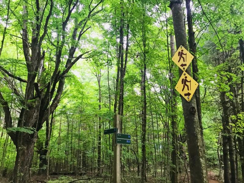 Jones Creek Trails