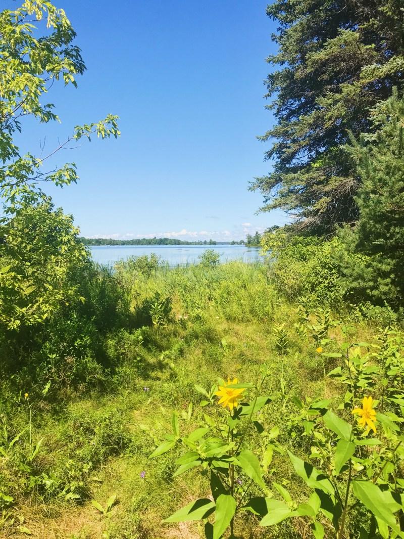 Portland Bay Conservation Area
