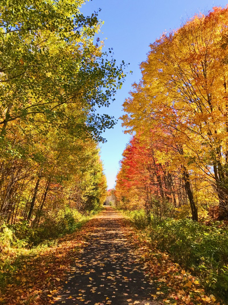 Vankleek Hill trail