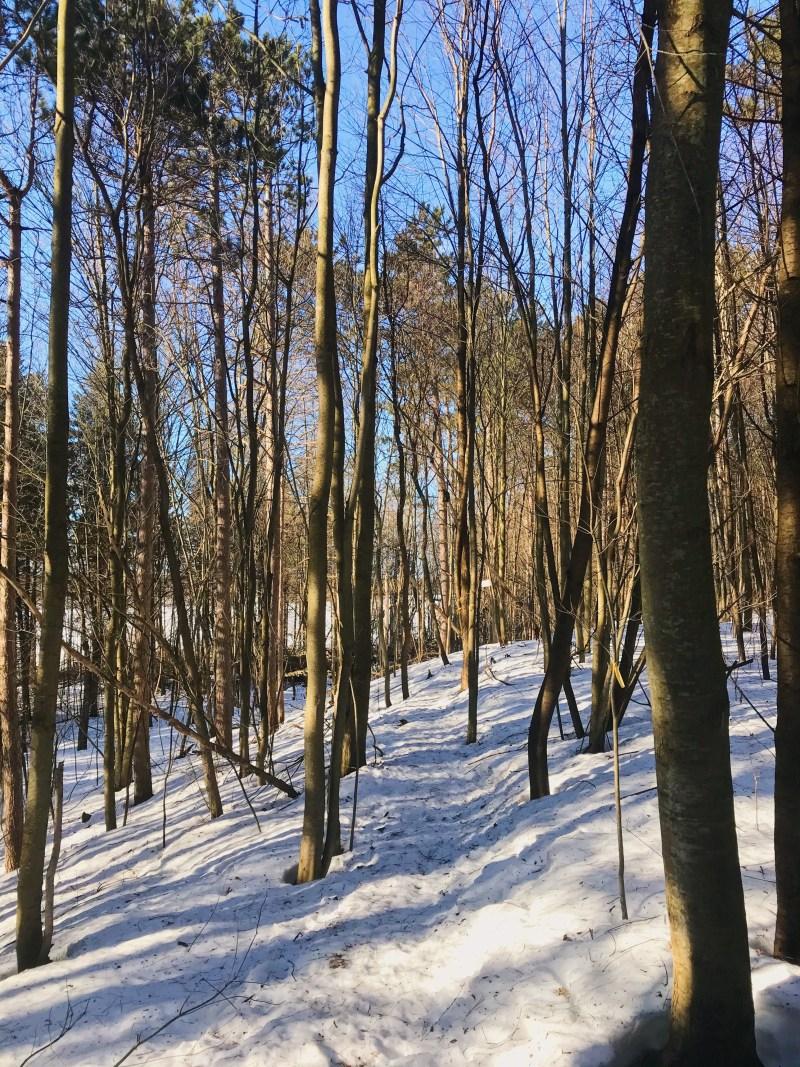 Sentier parc naturel Lavigne