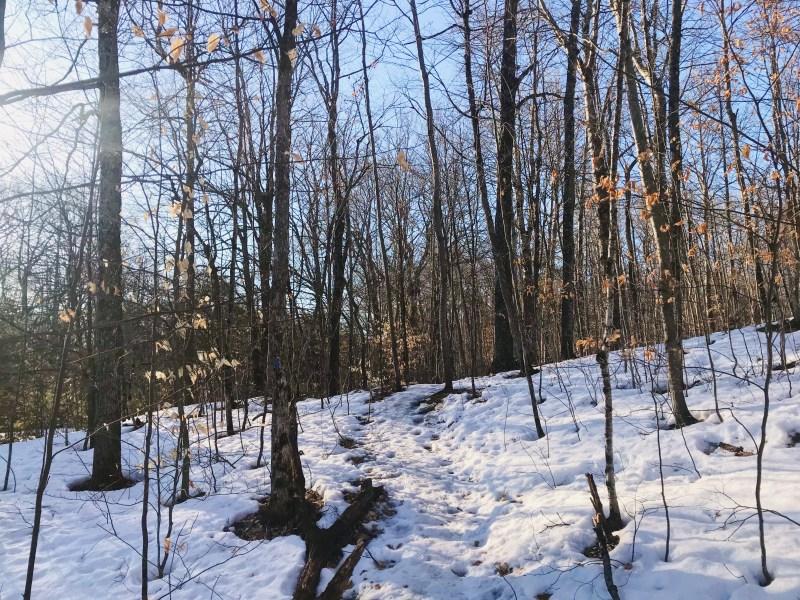 Sentier du mont Manitou