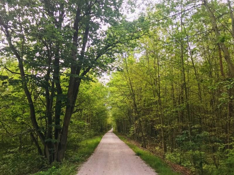 Sentier TIny Rail Trail