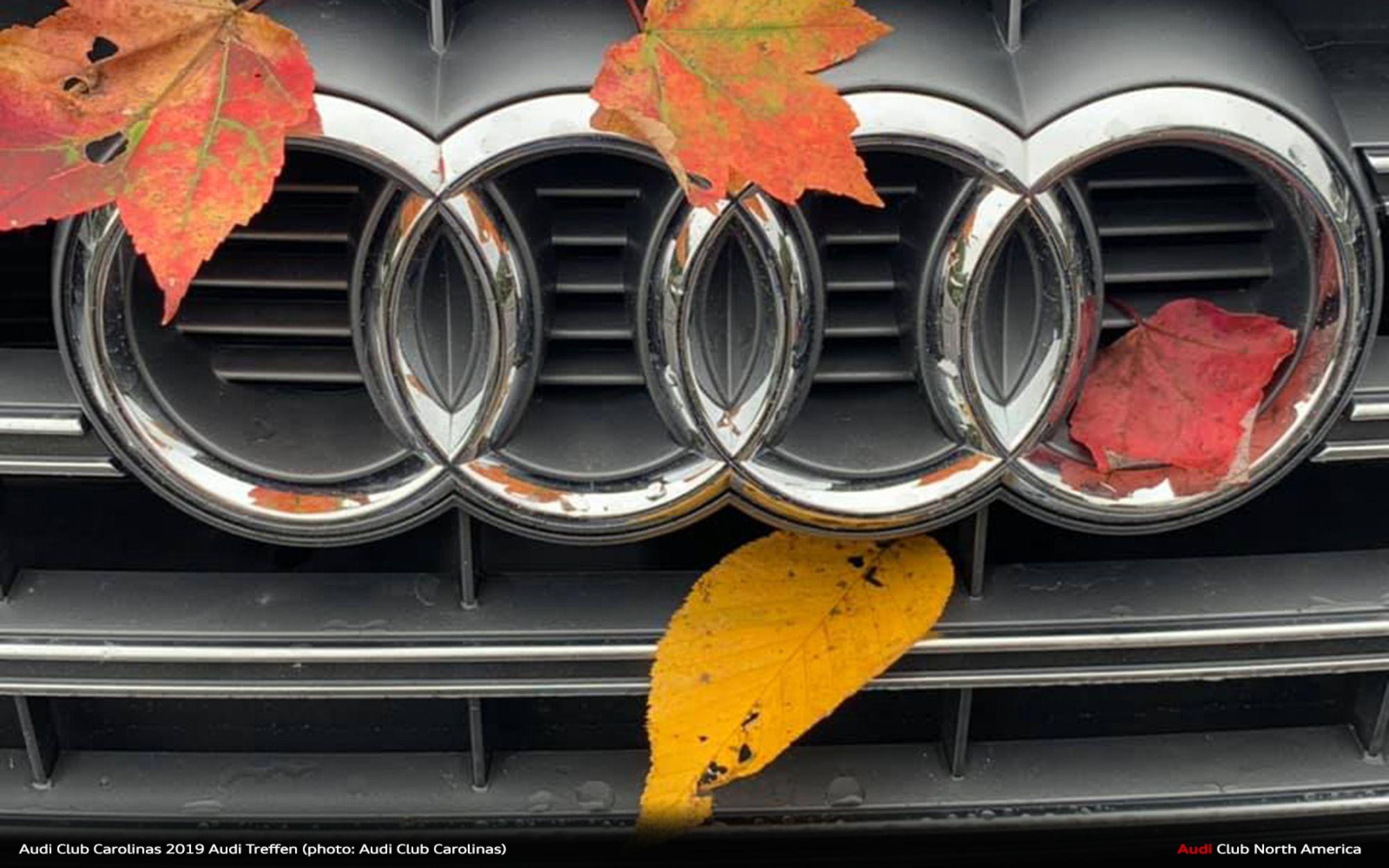 quattro Magazine q1_2020: Event Report- Audi Club Carolinas 2019 Audi Treffen