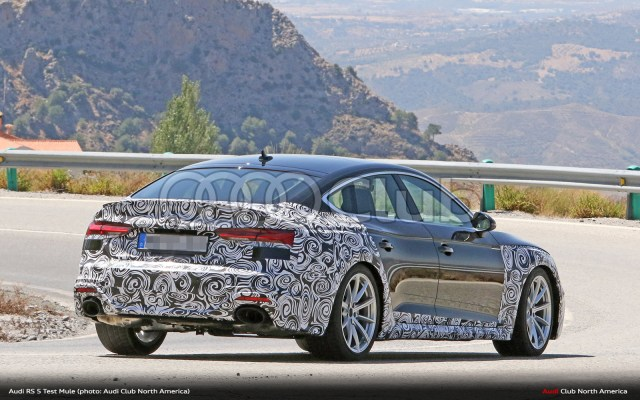 Audi RS 5 Sportback Facelift Spied - Audi Club North America