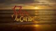 """""""Flor do Caribe"""" teve o melhor desempenho dentre as novelas das 18h recentes"""