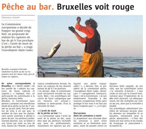 """Pêche au bar """"Bruxelles voit rouge"""""""