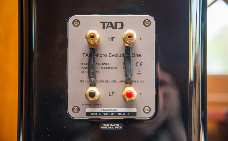 Review of the TAD Micro Evolution 1. The back binding posts.