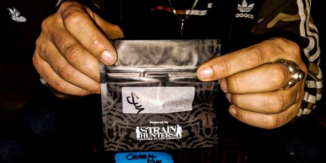 Cannabis packaged in mylar bags at Strain Hunters Coffeeshop in Amsterdam.