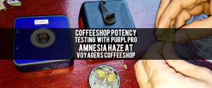 Testing THC & CBD of Amnesia Haze at Coffeeshop Voyagers with Purpl Pro. Cannabis potency test.