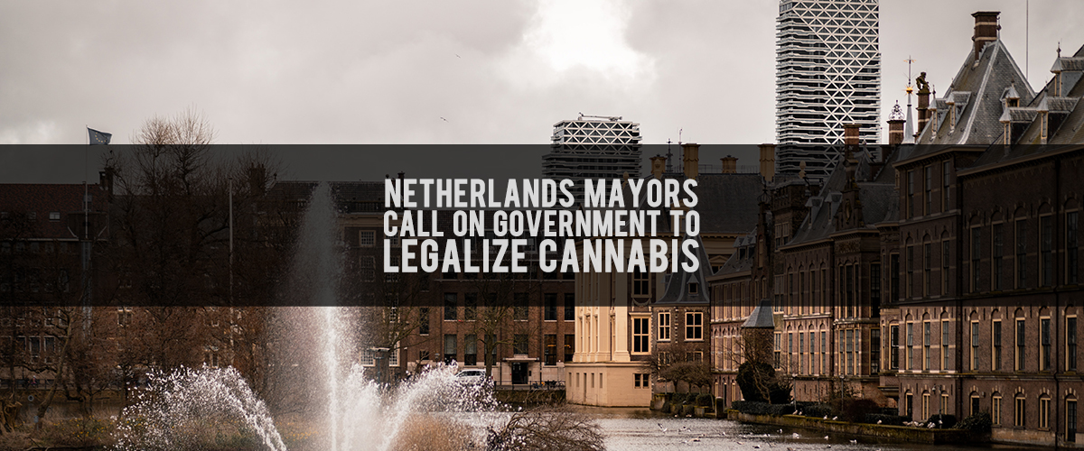 NL Mayors Want To Legalize Cannabis