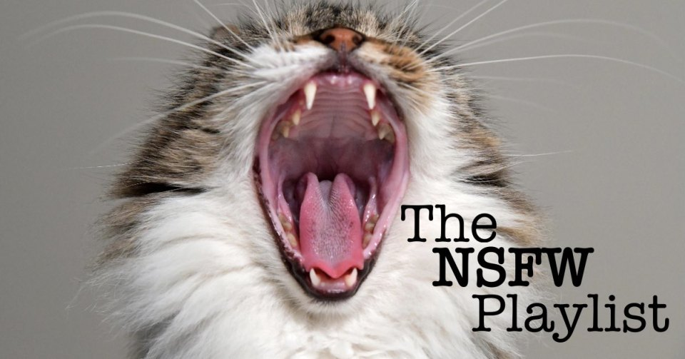 The NSFW Playlist.