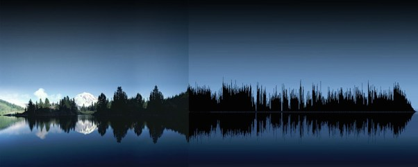 anna-marinenko-nature-sound-waves_06