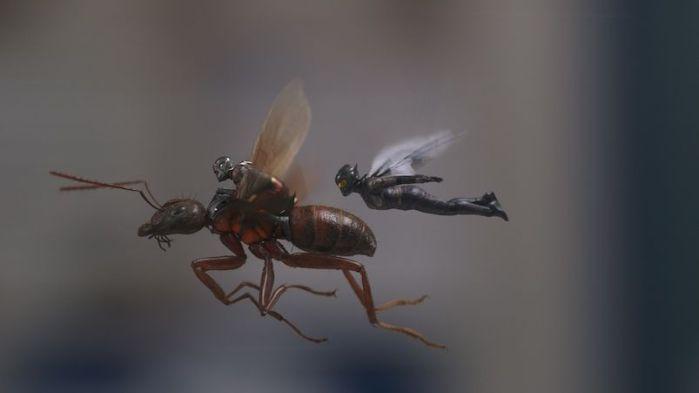 """ANT-MAN Y LA AVISPA"" (análisis del Blu-Ray). AudioVideoHD.com 2018"