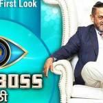 Bigg Boss Marathi Season 2