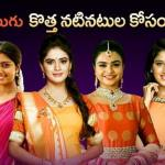 Auditions for Freshers in Zee Telugu