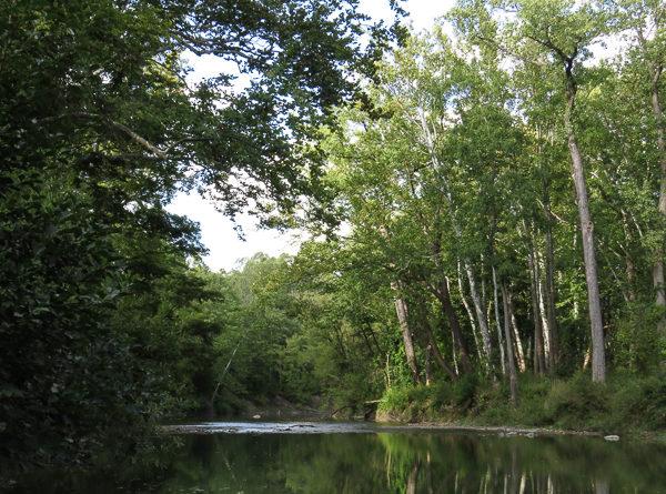 River 2 Sept 2016