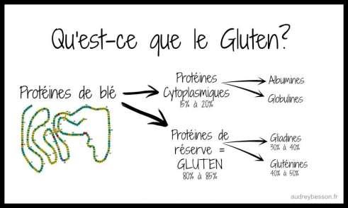 gluten structure composition