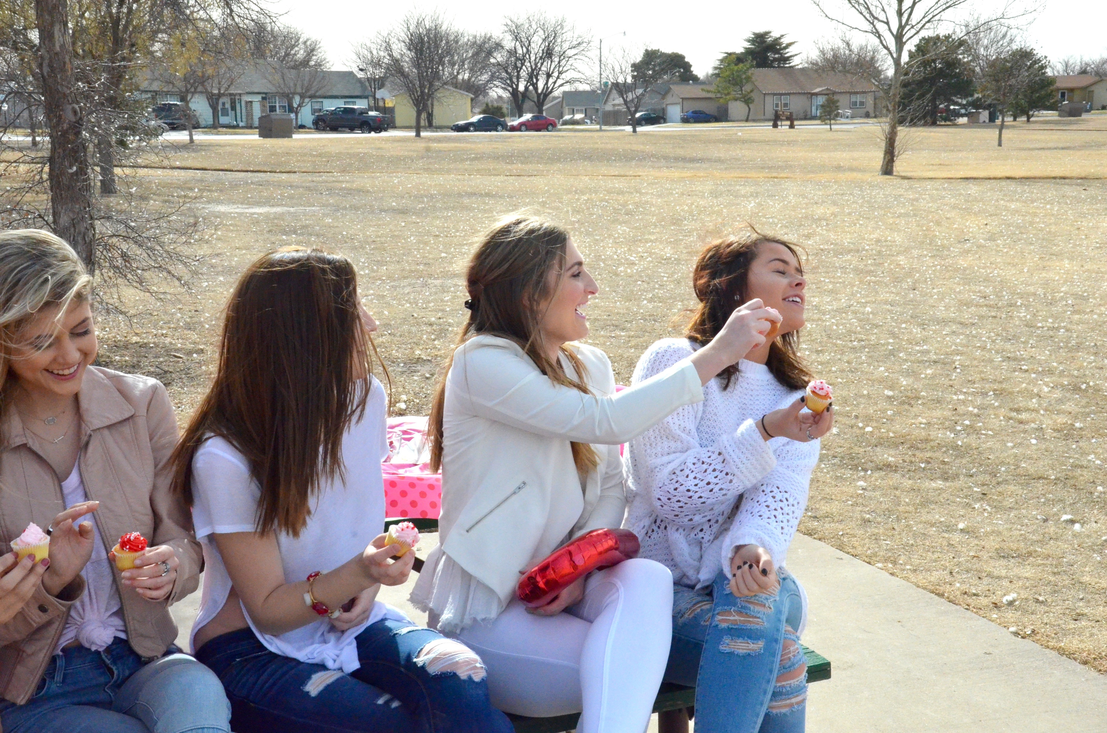 valentines day picnic outside